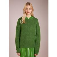 DESIGNERS REMIX TYLER Sweter green DEA21I00D