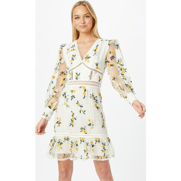 True Decadence Sukienka koszulowa TRD0053001000001